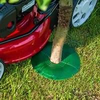treeguard-chrání-zdraví-stromu-protects-tree-health-Chránič-stromu